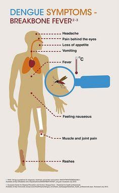Dengue symptoms by Sanofi Pasteur, via Flickr