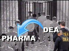 Pharma Guy (@pharmaguy) | Twitter New Market, Health Care, Marketing, Guys, Twitter, Image, Boyfriends, Boys, Men