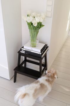 Homevialaura | spring flowers | white floor | coton de tulear | coffee table books