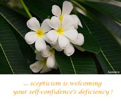... #scepticism is welcoming your #self-confidence's deficiency !