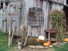this is our old barn, gourd tree, tobacco basket with bittersweet love to decorate it for fall