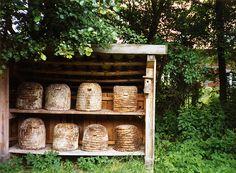 Bee skeps~Love them.
