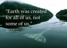 respect for all of life. envision & support new systems that will support all of humanity & all life on Mother Earth. Heart-based systems built in a new era of love, kindness, respect, unity. unity with one another, unity with the earth. Save Our Earth, Save The Planet, Our Planet, Planet Earth, Nature Quotes, Life Quotes, Earth Quotes, World Peace Quotes, Spiritual Quotes