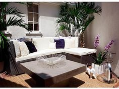 love this cb2 outdoor coffee table