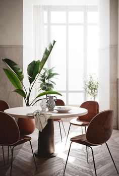 At this time it is simple to have dinner in style using traditional Swedish dining chairs. Read Amazing Dinning Room Ideas With Scandinavian Style