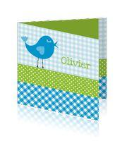 geboortekaart-jongen-ruiten-stippen-olivier