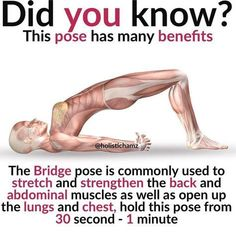 Did you know just 15 minutes of Yoga Practice a day can change your body chemistry & improve your mood completely? If you are a workout freak, yoga won't be your ultimate choice as it does not involve optimal or immense workout sessions. Yoga is not. Health Facts, Health Tips, Health And Wellness, Health Fitness, Health Memes, Yoga Fitness, Fitness Hacks, Yoga Positionen, Yoga In Bed