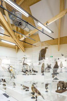 Museum and Biodiversity Research Centre by Guinée*Potin Architectes - exploratoreum