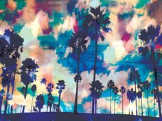 I just love random radiant colors with palm trees. It gives a gorgeous sunset look
