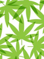 The Runner's High: Why Athletes Are Turning To Weed #refinery29  http://www.refinery29.com/greatist/178