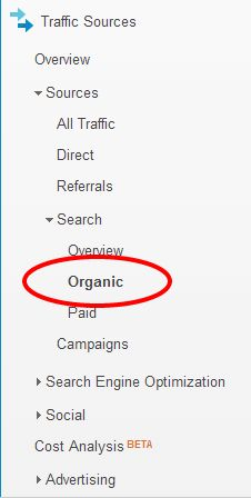 Organic Search Traffic   Google Analytics_V1- This girl breaks down SEO so that ANYONE can understand it!