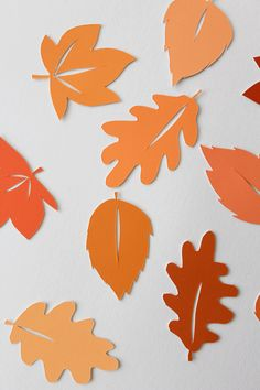 DIY Fallen Leaves Picture - Beak Up Crafts