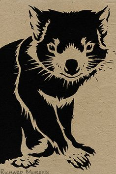 Printed stencil-art gift cards of a Tasmanian Devil – the largest marsupial carnivore in the world today. Disease is causing their numbers to fall at an alarming rate.
