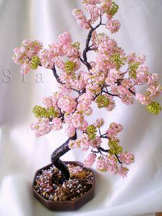 Цветущий бонсай.