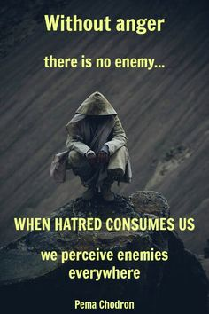 Without anger there is no enemy ... When hatred consumes us we perceive enemies everywhere. Pema Chodron