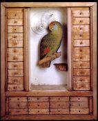 Joseph Cornell box