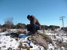 Pintando paisajes de invierno en acuarela