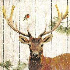 4 Single Table Party Paper Napkins for Decoupage Decopatch Craft Robin and Deer