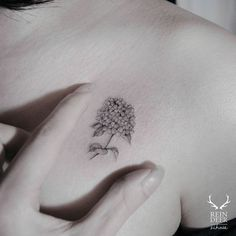 tiny lilacs tattoo - Google Search