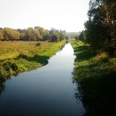 What a beautiful day for a #walk along the #riverwey with @eggwhisk