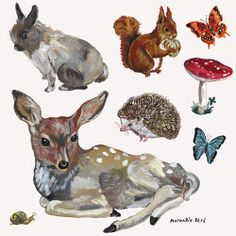 Animal wall stickers (set of 8) from Domestic, illustrated by Nathalie Lete.