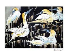 'A Company of Gannets' by Lisa Hooper