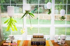 Upside Down Hanging Planters