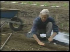 Eliot Colemans Technique for Direct Sowing Seeds & Spacing