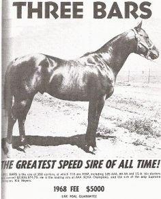 http://www.circle-s-quarter-horses.com/ThreeBars3.jpg