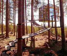 Tendencia: Tree hotels