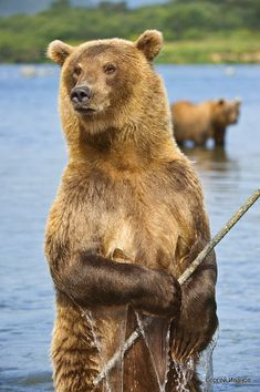 Fisherman, Kamchatka, Russia – Amazing Pictures - Amazing Travel Pictures with Maps for All Around the World
