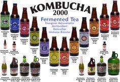 Google Image Result for http://www.kombucha2000.com/images/all_12_2.jpg