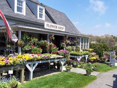 A New England Flower shop in Cape Cod, Ma it is so charming. I can't wait to plant.