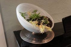 Light Fixtures re-purposed into planters