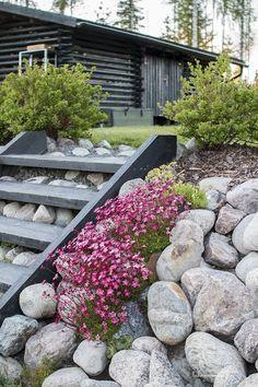IMG_9859 Sloped Backyard Landscaping, Patio Pergola, Sloped Garden, Easy Garden, Summer Garden, Rock Garden Design, Hillside Garden, Garden Stairs, Dream Garden