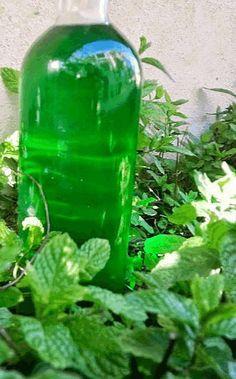 Ένα γλυκό ποτό που μπορεί να κλείσει όμορφα ένα πολύ λιπαρό γεύμα…και όχι μόνο.. Απόγευμα μέσα στο τσάι..σε κοκτέιλ τις καλοκαιρινές καυτές νύχτες…φάρμακο για το μπούκωμα…στη βαρυχειμωνιά Λικέρ παντός καιρού!!! Ένα λικεράκι Δυόσμου δεν πρέπει να λείπει ποτέ… από κανένα σπίτι!! Χαϊδευτικά θα το λέμε Απάτσι..όπως τα ελικόπτερα Απάτσι που είναι παντός καιρού!! Υλικά The Kitchen Food Network, Homemade Alcohol, Chocolate Fudge Frosting, Greek Sweets, Fruit Preserves, Oreo Pops, Eat The Rainbow, Liqueur, Smoothie Drinks