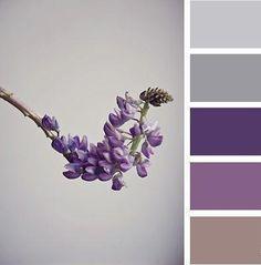 Pantone Color Scheme Love The Deep Purple With Grey Colour Pallette