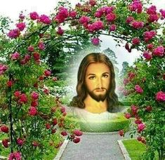 Lion Of Judah Jesus, Jesus Our Savior, Jesus Photo, Pictures Of Jesus Christ, Good Morning Images Hd, Christ The King, Beautiful Notes, King Of Kings, Image Hd