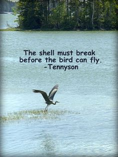 Break your shell with me, and fly. http://www.kindovermatter.com/2014/12/the-shell-must-break-before-bird-can-fly.html?m=1