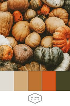 These warm, modern, color palettes you could use for your brand and other designs is inspired by beautiful images of fall. Orange Color Palettes, Earthy Color Palette, Pastel Palette, Colour Pallette, Colour Schemes, Autumn Inspiration, Color Inspiration, Pumpkin House, Tableau Design