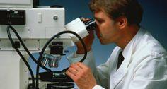 Möglichkeiten der Zelltherapie: Stammzelltransplantationen bei Kindern.
