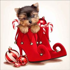 Maryline Cazenave Holiday Puppy