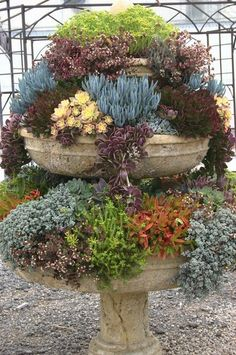 If you have a dry birdbath or fountain, use it to display cascading, rosette and clump-forming succulents. Moreover, birdbaths, because they are basically a pan atop a pedestal, can be used for miniature landscapes. Consider it a bonus if a leak ruined your fountain or birdbath -- it means water will drain.