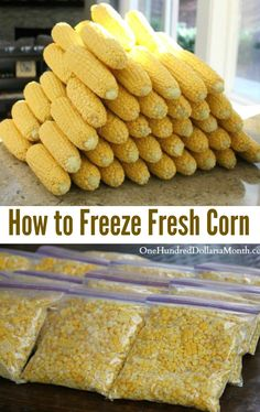 How to Freeze Fresh Corn One Hundred Dollars a Month is part of Freezing fresh corn I never thought the shucking would end, but it finally did Thanks to the Handsome Husband I now have enough corn - Freezing Fresh Corn, Freezing Vegetables, Canning Vegetables, Frozen Vegetables, Fruits And Veggies, Freezing Fruit, Freezing Green Beans, Home Canning Recipes, Cooking Recipes