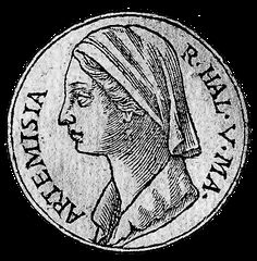 artemisia i of caria 5th century Named after the goddess of the hunt (artemis), artemisia was the 5th century  bce queen of halicarnassus, a kingdom that exists in.