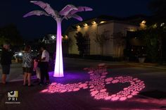 Vincent's Victory in Pink. Pink ribbon light display and white spandex palm tree illuminated with LED lights. White Spandex, Great Gatsby Party, Event Lighting, Palm Trees, Champagne, Display, Lights, Pink, Ribbon
