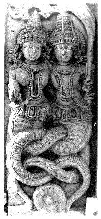 naga and nagini