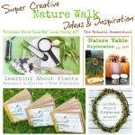 Super Creative Nature Walk Ideas & Inspiration (Link Party #37)