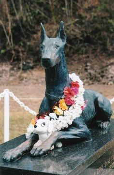 Because sometimes dogs are heroes too....Guardian of the Guam War Dog Cemetery. Commissioned by the United Doberman Club to commemorate the 24 Dobermans who gave their lives in service during the Battle of Guam in 1944.