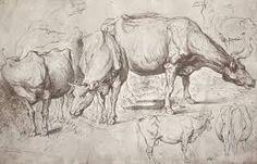 Bildergebnis für peter paul rubens drawings